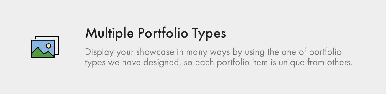 Multiple Portfolio Types